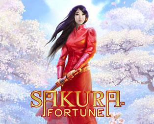 sakura fortune slot game