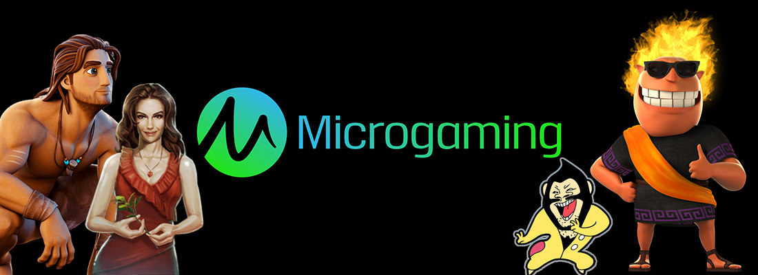 microgaming game provider banner